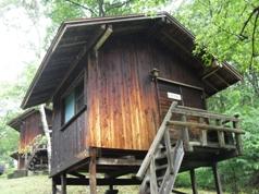 場 公園 キャンプ のぞき ど 森林
